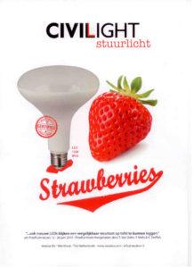 led-lamp-aardbei-folder-voor
